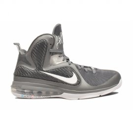 Lebron 9 Cool Grey White Mtllc Silver